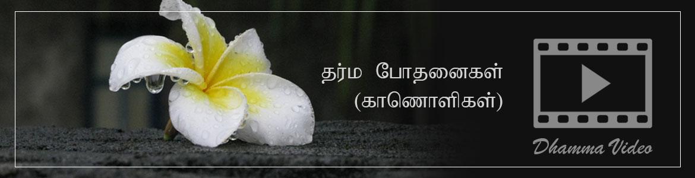 Tamil Dhamma Video | தர்ம போதனைகள் | Tamil Buddhist
